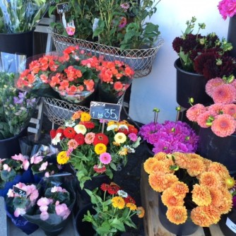 Danish Flower Shop